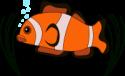 Salt Water Coral Tank